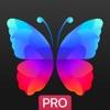 Everpix Pro – Fondos, imágenes (AppStore Link)