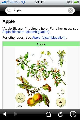 Wikipedia Mobile 01
