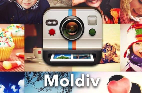Moldiv