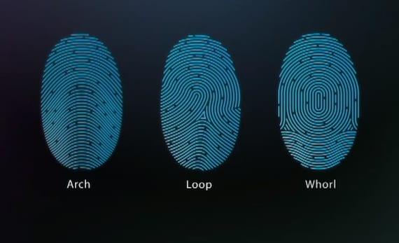 Patrones de huellas en Touch ID