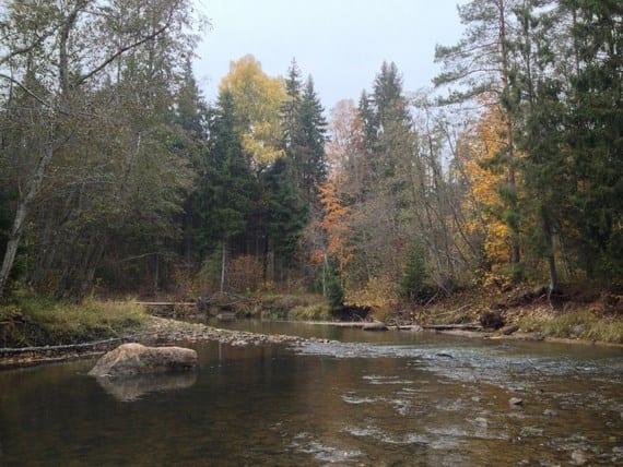 iPhone-river-landscape