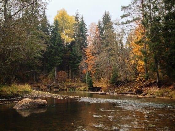river-landscape-snapseed