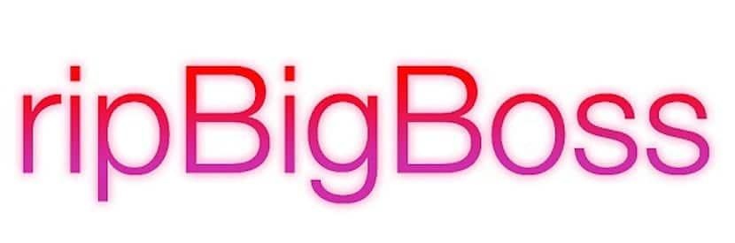 ripBigBoss-logo