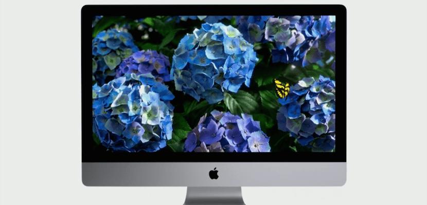 Frontal del iMac con pantalla Retina
