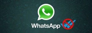 WhatsApp No