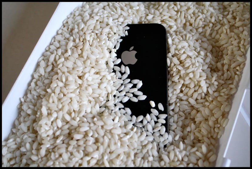 iPhone con arroz