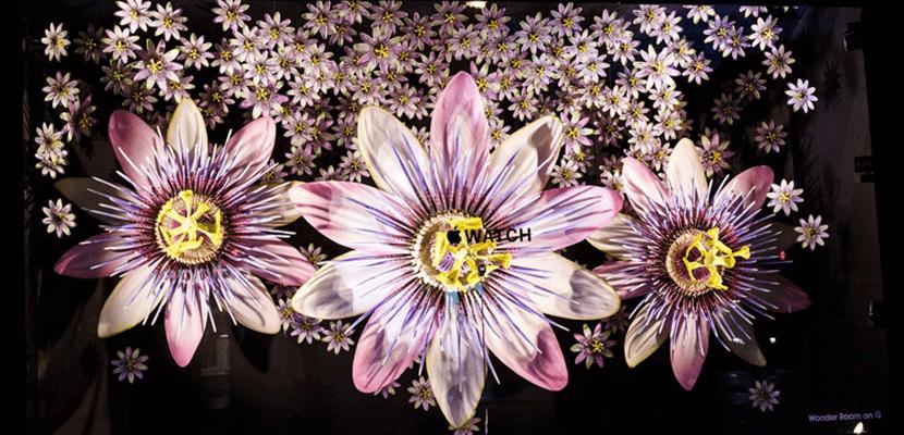 selfbridges escaparate flores moradas apple watch