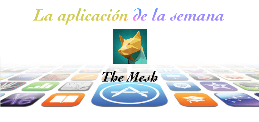 The-mesh