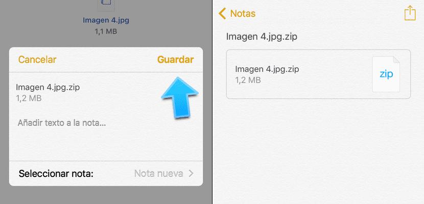 notas-zip-2