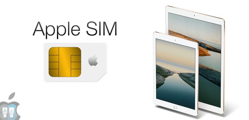 Imagen del iPad con la Apple SIM