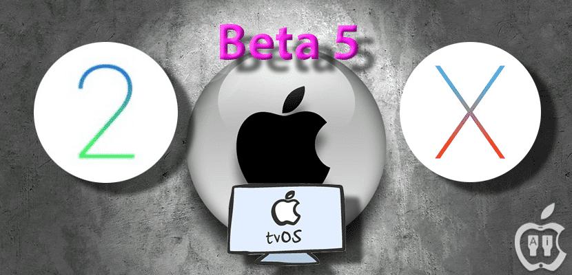 beta-5