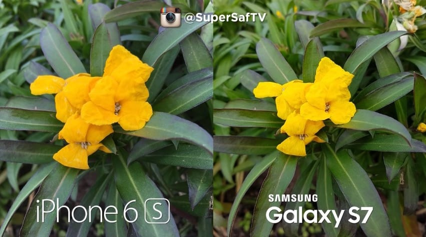 camara-Galaxy-s7-vs-iphone-6s-plus-1