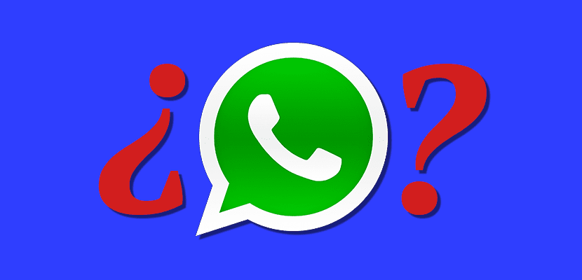 Duda WhatsApp