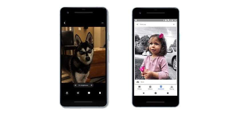 Google Fotos nos permitirá colorear fotos en blanco y negro ...