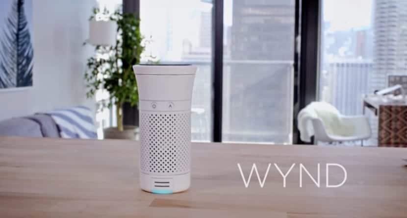 Wynd Plus