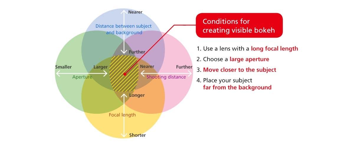 Cómo funciona el efecto bokeh
