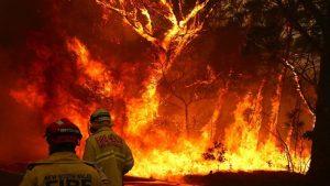 Incendios Autralia