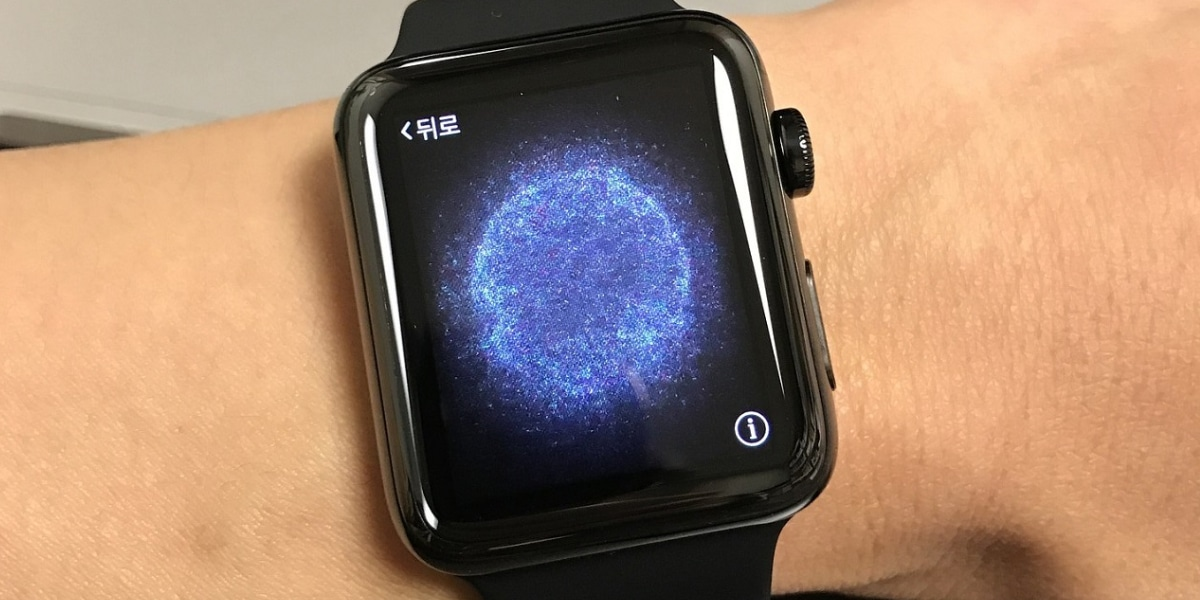 Seguridad Apple Watch