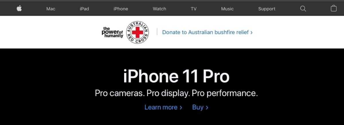Apple donaciones