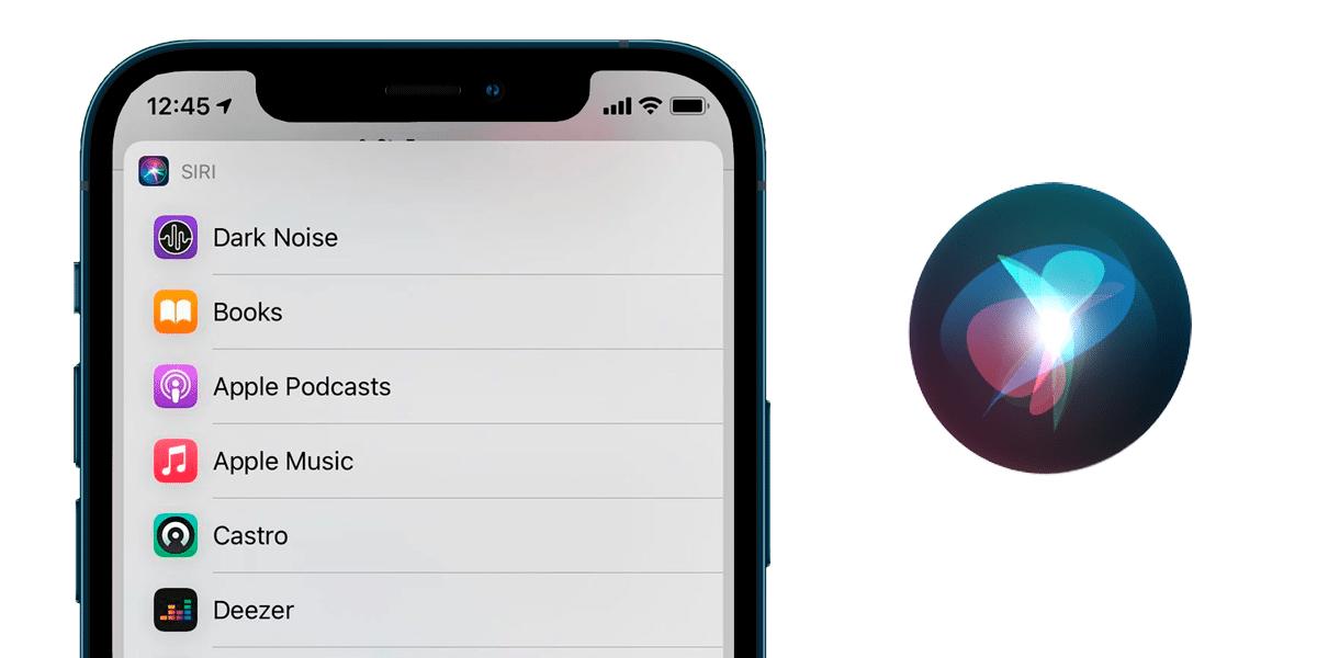 iOS 14.5 y Siri