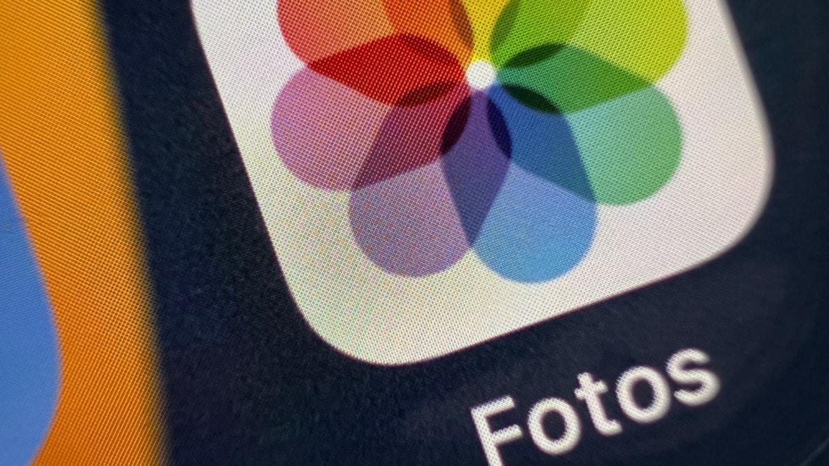 Foto en modo Macro del iPhone 13 Pro Max